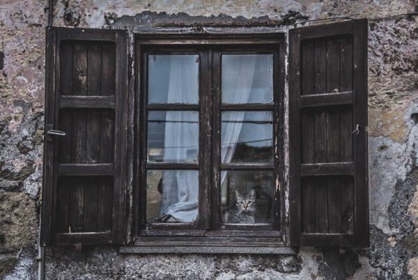 Holzfenster Restauration
